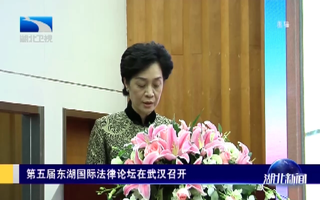 第五届东湖国际法律论坛在武汉召开