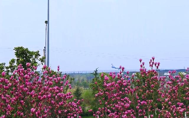 """""""开往春天的飞机""""也很美"""